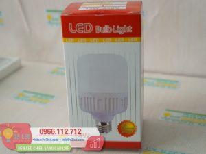 Den LED Bulb 13W Tru Tron(2)
