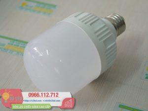 Den LED Bulb 13W Tru Tron(6)