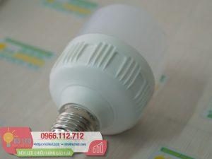 Den LED Bulb 13W Tru Tron(7)