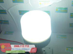 Den LED Bulb 13W Tru Tron(9)
