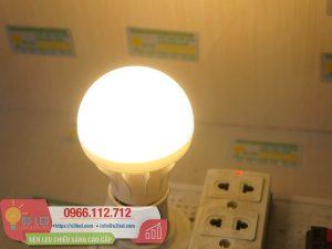 Den LED Bulb 9W Nhua(14)