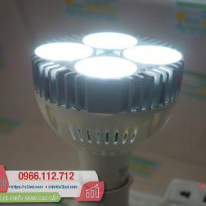 Đèn LED Chiếu Điểm 30W T-Ray