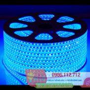 Đèn LED dây 5050 cuộn 100m - 60led/m màu xanh dương